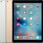 iPad Pro (12,9 inç)