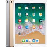 iPad Pro 12,9 inç (2. nesil)